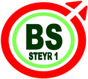 BS Steyr 1 : Brand Short Description Type Here.
